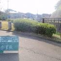 ueki_b_03