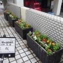 横浜市花壇管理-01